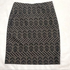 Ann Taylor | Stretchy Lace Covered Skirt